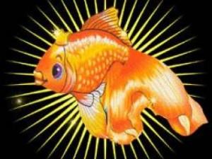 Золоя рыбка